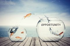 stock image of  goldfish jumping out to aquarium with opportunity text