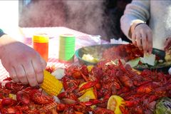 stock image of  hand reaching in for a piece of corn on the cob from a pile of steaming food at a crawfish boil with another hand picking food out