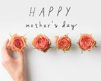 stock image of  hand touching pink rose buds placed in row with happy mothers day inscription
