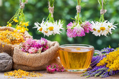 stock image of  healing herbs, bags with dried plants and tea cup