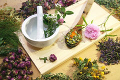 stock image of  herbal medicine