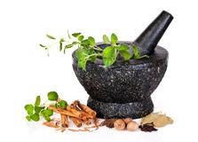 stock image of  herbs with mortar