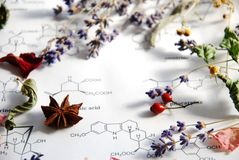 stock image of  herbs and science