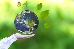 stock image of  holding a glowing earth globe in his hands with butterfly.
