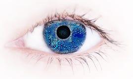 imagine stock despre  umane ochi cu cu electronice circuitul bord reflecţie abstracte