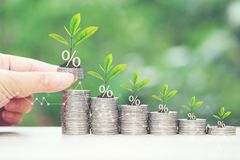 stock image of  interest rate up and banking concept, plant growing on stack of coins money on natural green background