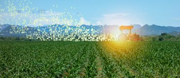 stock image of  iot smart farming, agriculture in industry 4.0 technology with artificial intelligence and machine learning concept. it help to im