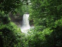 stock image of  jungle falls