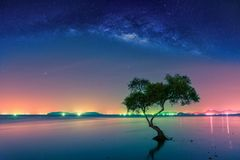 stock image of  landscape with milky way galaxy. night sky with stars and silhouette mangrove tree in sea. long exposure photograph.