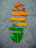 stock image of  leaves of different age of jack fruit tree on dark stone background. ageing and seasonal concept colorful leaves with flat lay