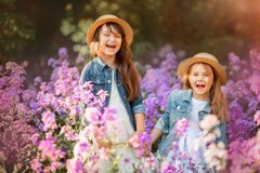 stock image of  little sisters outdoor portrait in a pink meadow