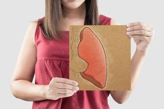 stock image of  lung on paper. concepts of health care and internal organs