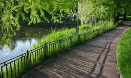 stock image of  summer landscape. alley in the park. magic place. relaxation corner