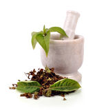 stock image of  mortar pestle