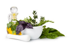 stock image of  mortar with herbs