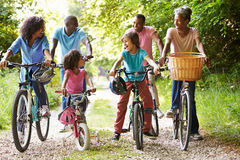 stock image of  multi generation african american family on cycle ride
