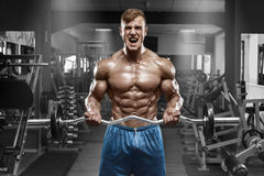 stock image of  muscular man working out in gym doing exercises with barbell at biceps, strong male naked torso abs