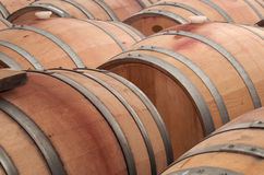 stock image of  oak casks for ageing wine