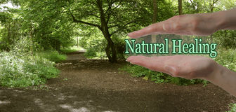 stock image of  the path to natural healing