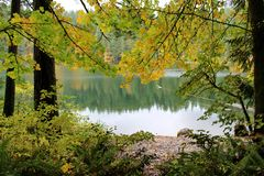 stock image of  peace and serenity at the lake, battle ground state park, lewisville, washington, usa