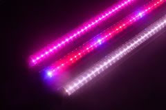 stock image of  plant growth led light tube