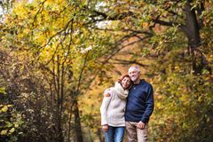 stock image of  a portrait of a senior couple standing in an autumn nature. copy space.