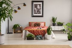stock image of  poster above red bed with blanket in grey bedroom interior with plants and carpet