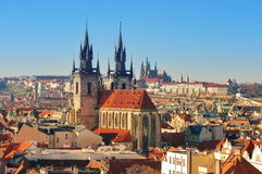 stock image of  landmark attraction in prague: catholic church of our lady before tyn - czech republic