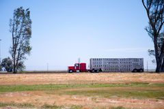 stock image of  profile of classic red rig semi truck with trailer for transport