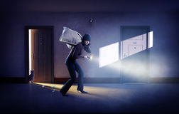 stock image of  robber in a mask with bags of money
