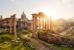 stock image of  roman ruins in rome, forum