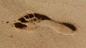 stock image of  sand footprint