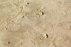 stock image of  sand texture