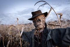 stock image of  scary scarecrow in a hat