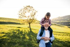 stock image of  a senior grandfather giving a small granddaughter a piggyback ride in nature.