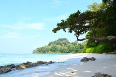 stock image of  serene landscape with stony beach, trees, sky and water - neil`s cove, radhanagar beach, havelock island, andaman nicobar, india