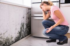 stock image of  shocked woman looking at mold on wall