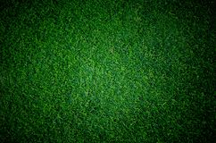 stock image of  soccer football grass field