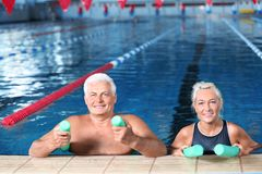 stock image of  sportive senior couple with swimming noodles