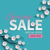 stock image of  spring sale floral banner with paper cut blooming pink cherry flowers on blue background for seasonal design of banner, flyer