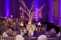 stock image of  table decoration for a winter wedding