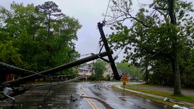stock image of  transformer on a pole and a tree laying across power lines over a road after hurricane moved across