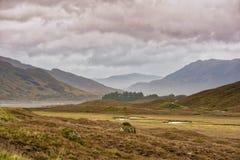 stock image of  scottish highlands
