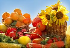 stock image of  vegetables and fruits