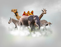 stock image of  wild animals group - giraffe, elephant, zebra above white clouds in gray sky