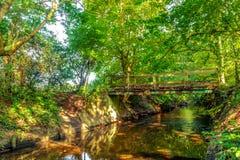 stock image of  wimbledon common bridge-beverley brook