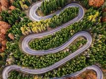 stock image of  winding road in autumn season