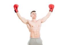stock image of  winner or champion boxer