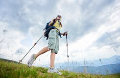 stock image of  woman hiker hiking on grassy hill, wearing backpack, using trekking sticks in the mountains