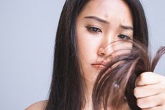 stock image of  dry hair